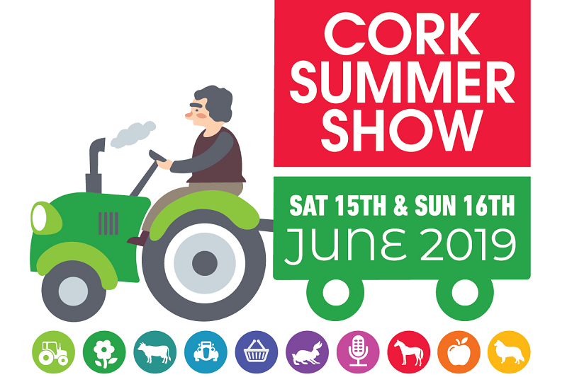Cork Summer Show Image
